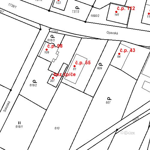 Katastrální mapa Stavební objekt Budišovice 55, Budišovice