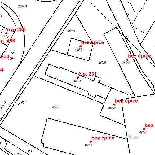 Katastrální mapa Stavební objekt Bílovec 231, Bílovec