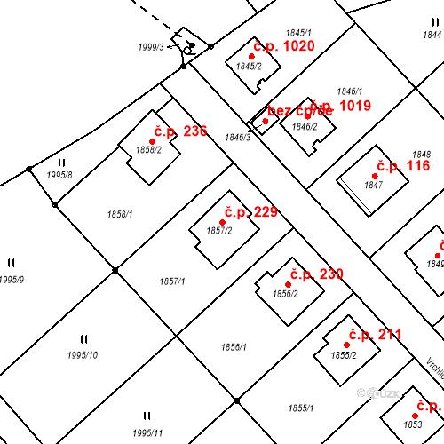 Katastrální mapa Stavební objekt Bílovec 229, Bílovec