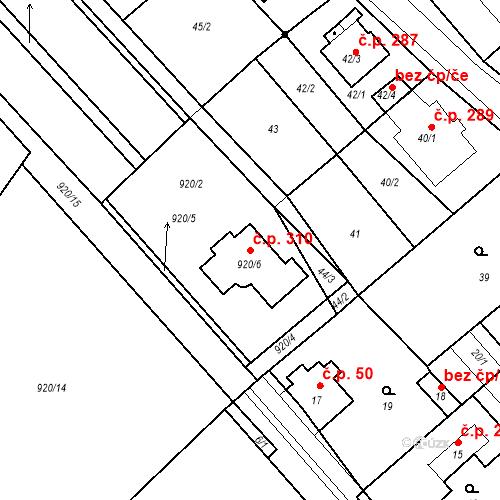 Katastrální mapa Stavební objekt Prštice 310, Prštice