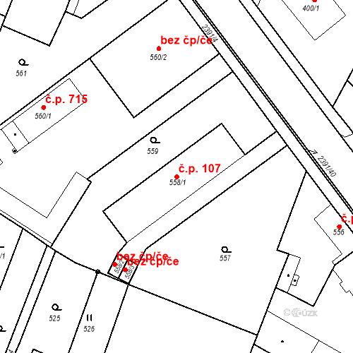 Katastrální mapa Stavební objekt Holice 107, Holice