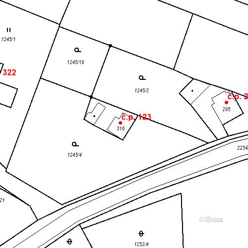 Katastrální mapa Stavební objekt Deštná 123, Deštná