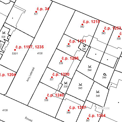 Katastrální mapa Stavební objekt Vinohrady 1206, Praha