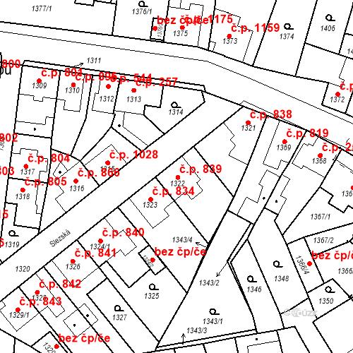 Katastrální mapa Stavební objekt Tachov 839, Tachov