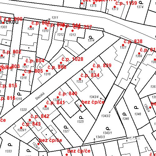 Katastrální mapa Stavební objekt Tachov 834, Tachov
