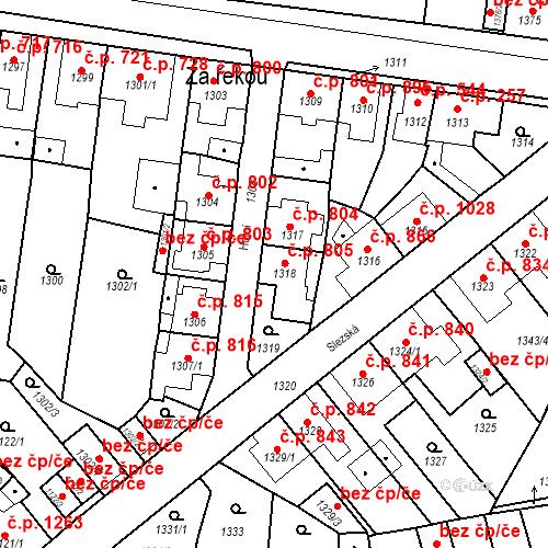 Katastrální mapa Stavební objekt Tachov 805, Tachov