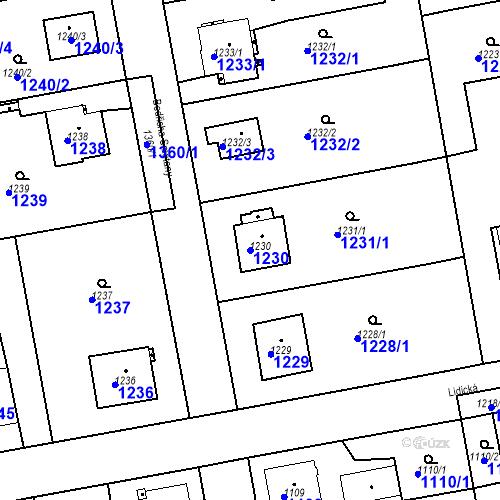 Katastrální mapa Parcela 1230 na katastrálním území Třemošná